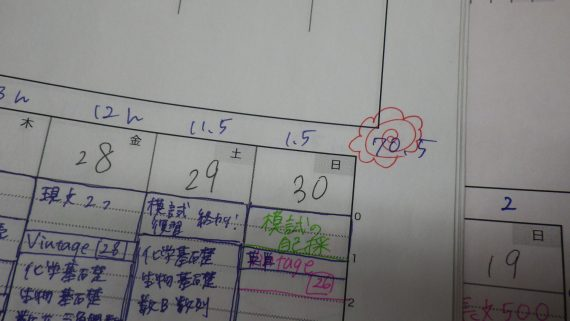 IMGP5251