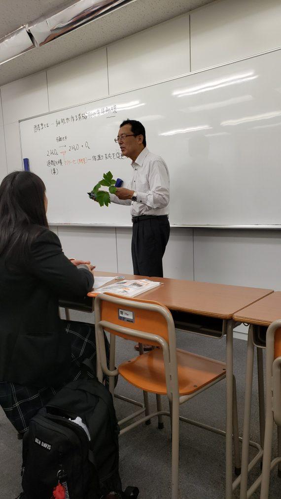 アシタバの葉っぱを使って実験!!